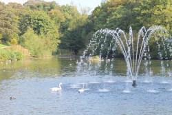 Astley park