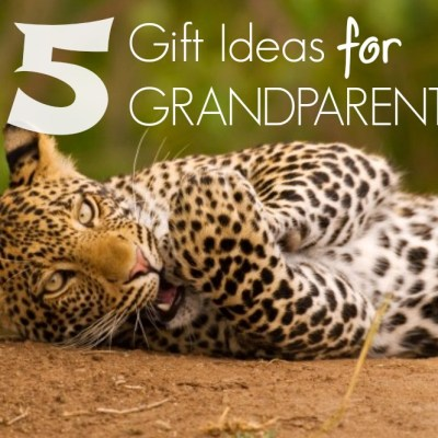 5 Gift Ideas for Grandparents