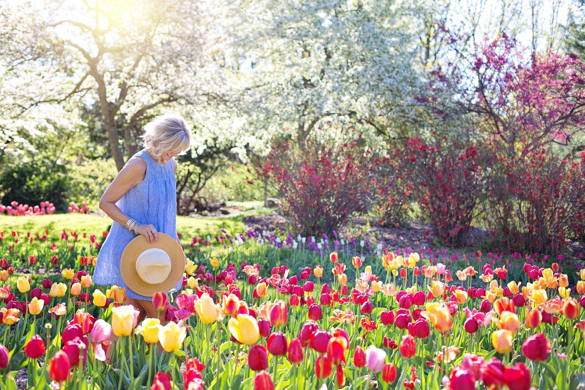garden features woman walking on bed of tulip flowers