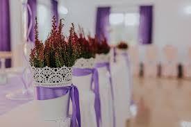 Wrzosowy odcień fioletu
