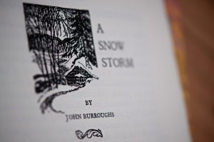 John Burroughs story of A Snow Storm