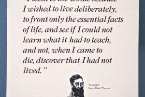 Thoreau quote broadside
