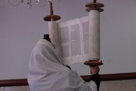 Ashkenazi style Torah scroll גמלאי עיריית טבריה [CC BY 2.5], via Wikimedia Commons