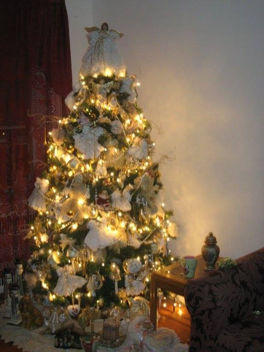 Jonathan's Christmas tree this year