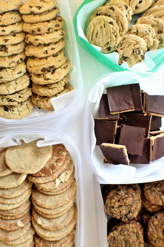 chocolate chip, snickerdoodle, peanut butter bars, and vegan oatmeal raisin cookies
