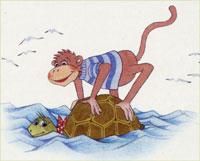 schizzare la tartaruga