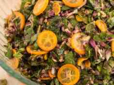 Kale Sprout and Kumquat Slaw {vegan}