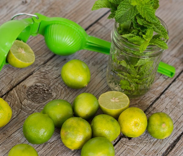 Mint and Limes for tequila mojitos from LettysKitchen.com