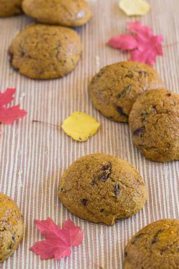Honey and whole wheat flour give Pumpkin Spice Chocolate Chip Cookies a healthy boost. Soft, tender, and puffy, these updated old-fashioned pumpkin cookies remind me of the ones my grandmother made!