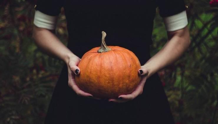 halloween zucca