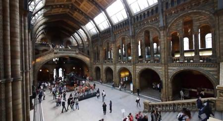 Top 5 Tourist Attractions in London