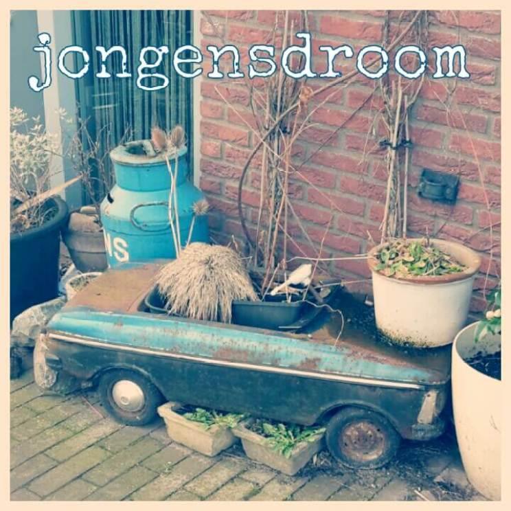 Plantenbakken voor de moestuintjes: ideeën om te knutselen en in de winkel. Planten in een oude speelauto zetten.