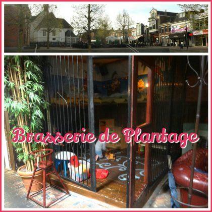 landal-amerongse-berg-brasserie-de-plantage.png.png