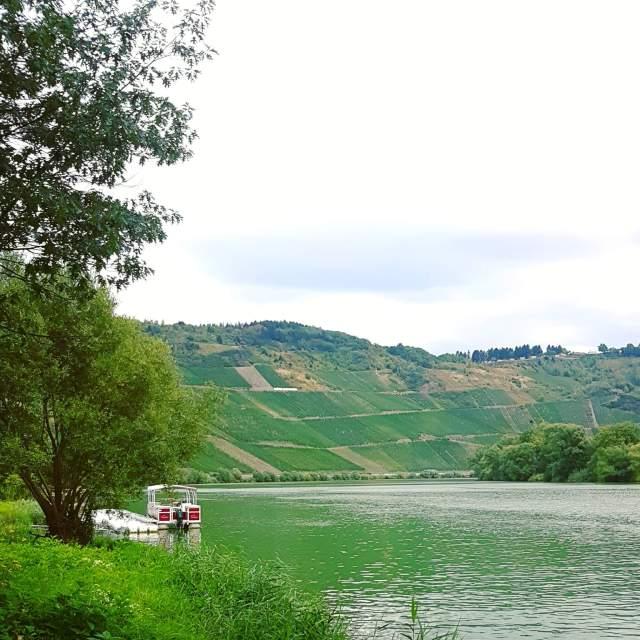 Landal Mont Royal: spelen, zwemmen en wijnproeven met een panoramisch uitzicht - wijndorp Krov boottochten op de Moezel