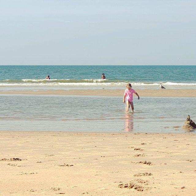 zwemmen bij strand Bakkum