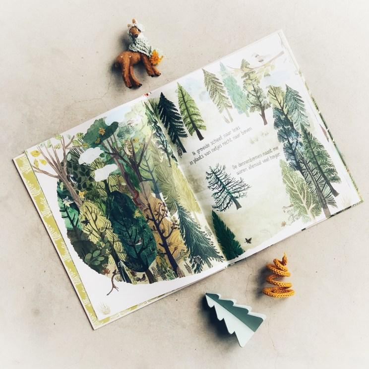 Het boompje in het bos van Yuval Zommer