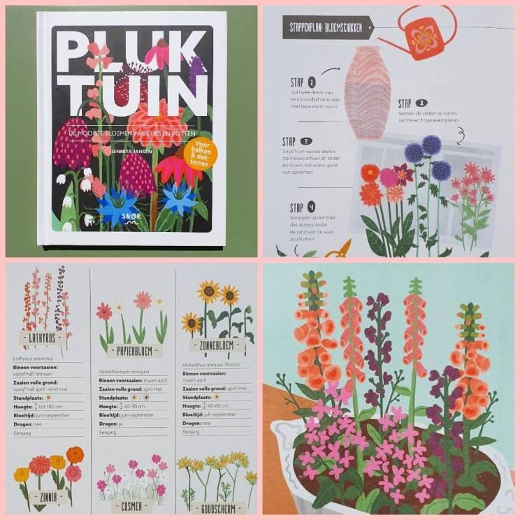 Pluk tuin. De mooiste bloemen in kistjes en potten