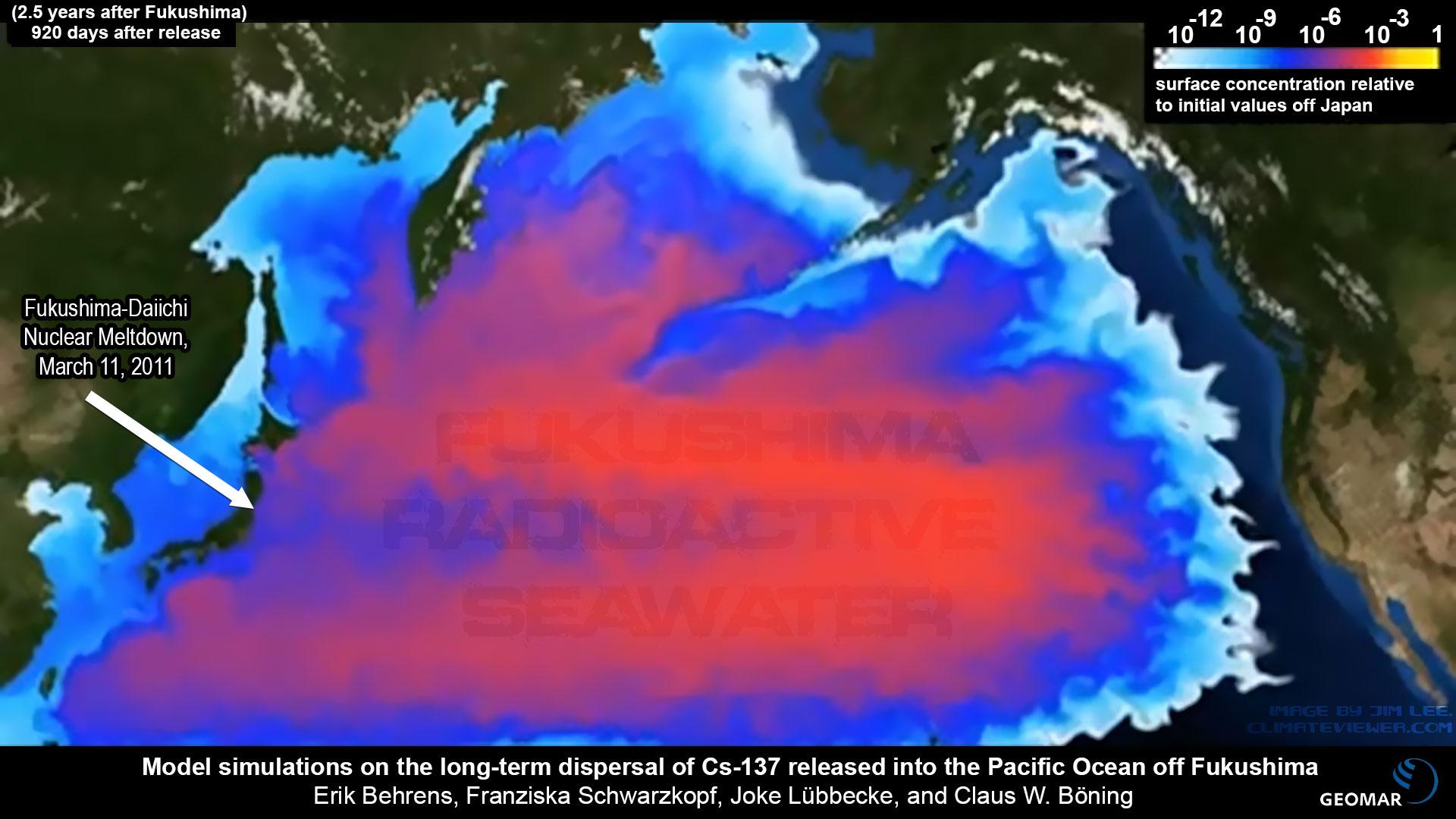 Image result for update on fukushima