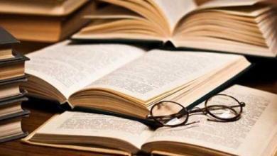 صورة ثقافة الناقد الأدبي .. متى يكون النقد موضوعياً بقلم عزت عمر