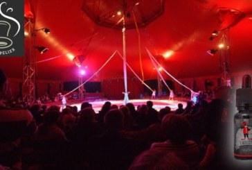 L'Auguste (gamme Black Cirkus) par Cirkus