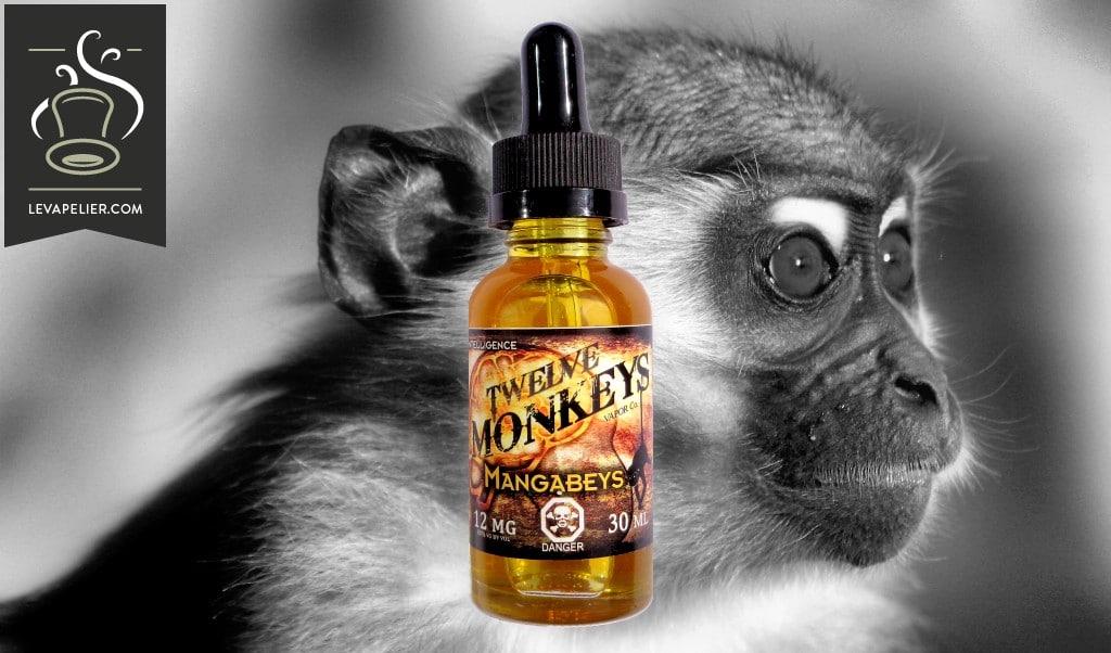 Mangabeys van Twelve Monkeys