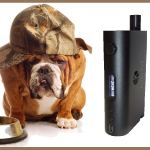 Nebox Starter Kit par Kangertech