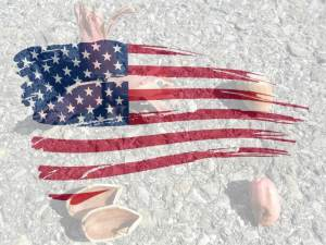 Flag-Hazel