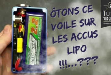 LiPo batteries under the microscope