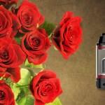 Rose MTL par Fumytech