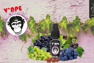 Bonobo (טווח שחור) על ידי V'ape