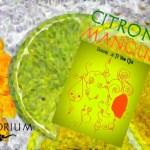 Citron – Mangue (Gamme Haiku) par Le Vaporium