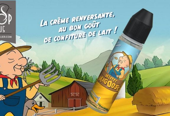 Mister Magoose par C-liquide France