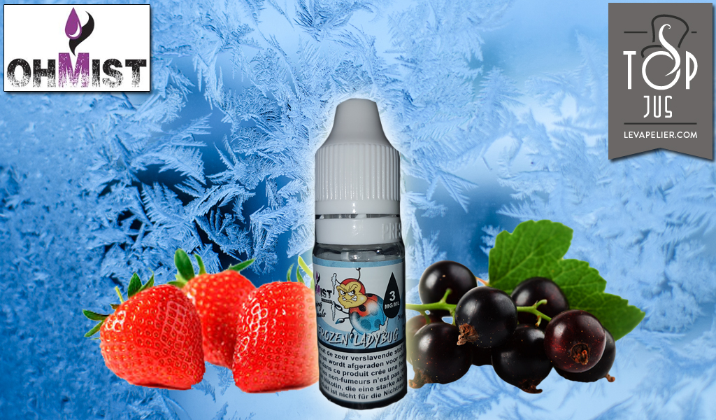 Frozen Ladybug (Range Vaping Animals) door OhMist