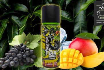 BLK Mango (Gamme Watt The Flava) par My's Vaping France