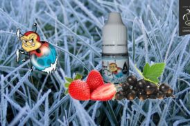 Frozen Ladybug (Range Vaping Animals) van Ohmist