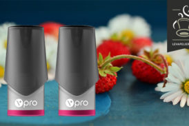 Fruits of the Woods (vpro-assortiment) van Vype