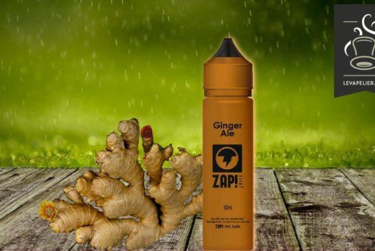 Ginger Ale par Zap Juice