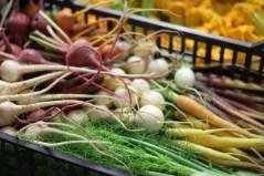 Légumes des producteurs locaux