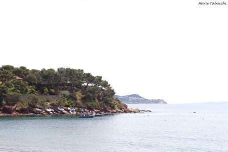 Le Fabrègue, La Seyne-sur-Mer