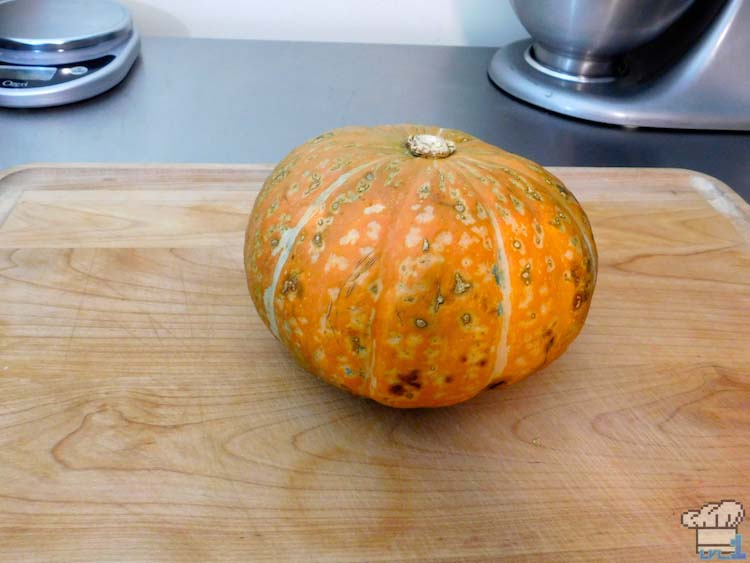 Stunning, multi-colored pumpkin awaiting being sliced and hollowed out to use as a bowl for the meat stuffed pumpkin recipe from the Legend of Zelda Breath of the Wild game series.