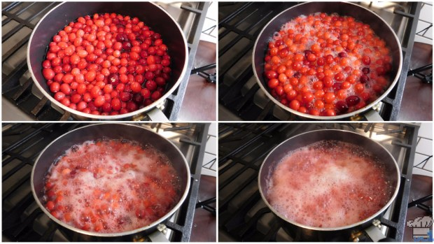 cranberries boiling for the cranberry candy recipe from the stardew valley video game