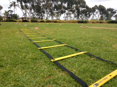 neuromotor with agility ladder