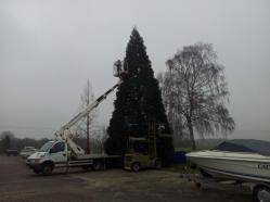 Weihnachtsbaum-Schiffswerft-2014-01