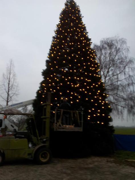 Weihnachtsbaum-Schiffswerft-2014-06