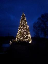 Weihnachtsbaum-Schiffswerft-2014-16
