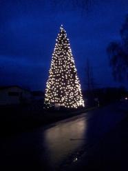 Weihnachtsbaum-Schiffswerft-2014-17