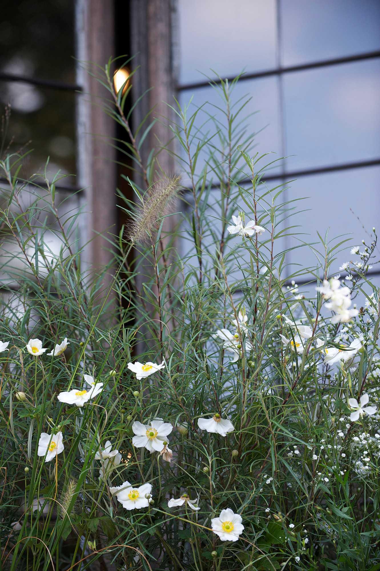 horticolario_015