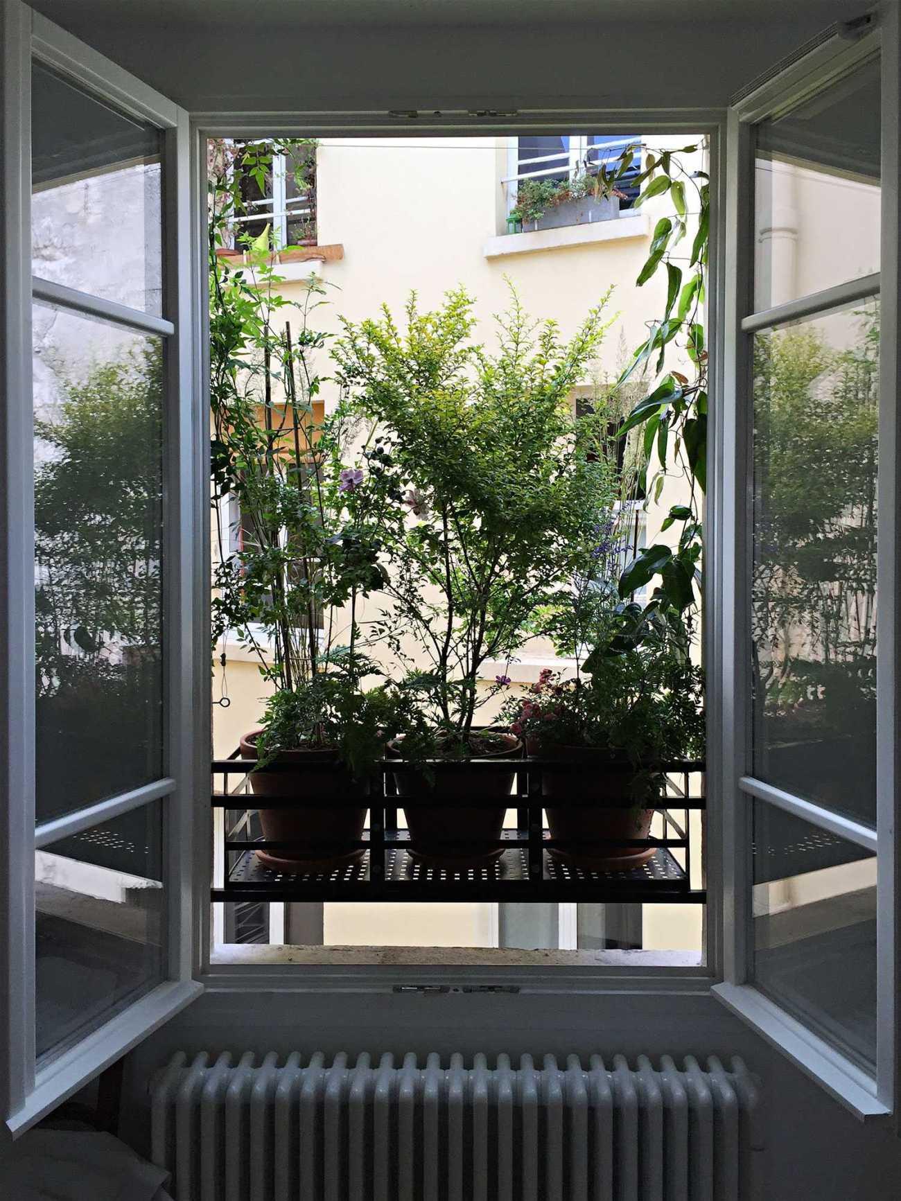 Rue de Turenne. Décoration végétale Le Vert à Soi
