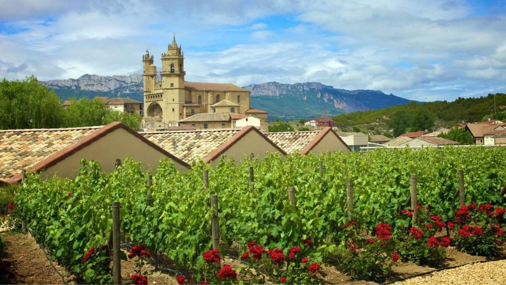 Les vins espagnol les plus connus