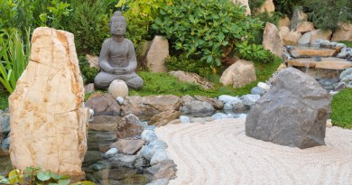 landscaping with pavers and rocks